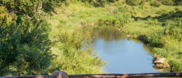Lukimbi Safari Lodge 10 596x800 1